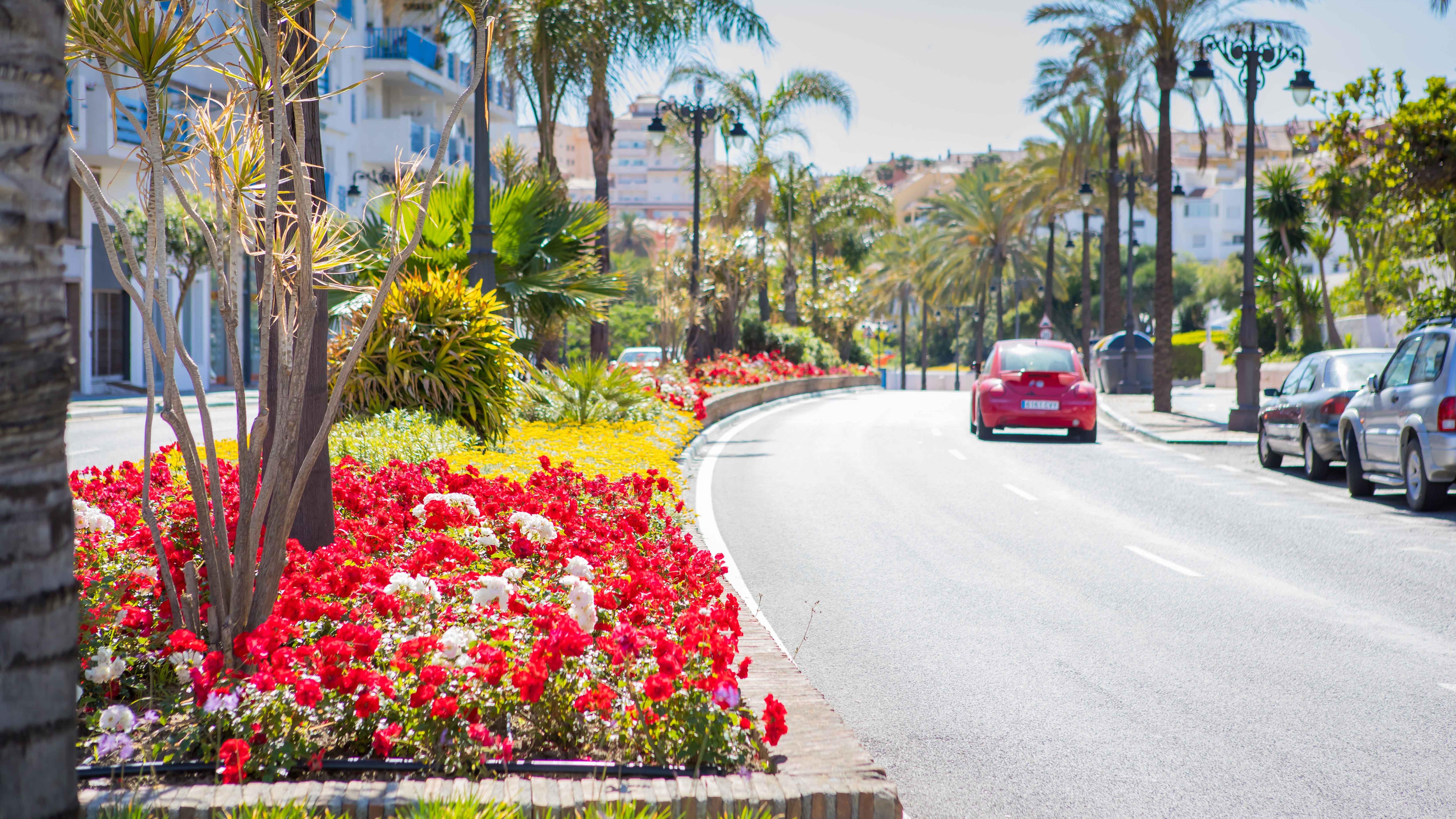 El Ayuntamiento adjudica el nuevo contrato de mantenimiento de ...